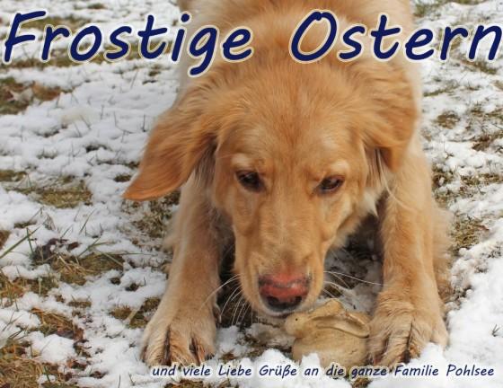 Osterhase 1