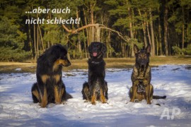grosse-hoehe_13-03-04_091-text